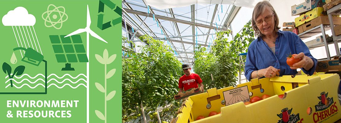 environment and resources career cluster header, an older woman and a box of strawberries in a greenhouse